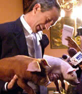 Mark-Sanford-Piglets exp